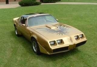 1979 81 Pontiac Trans Am Gold Decal Kit Complete