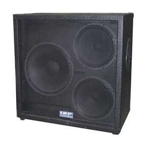 Active Powered Guitar Speaker Cabinet (Standard) Musical Instruments