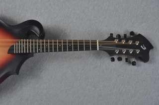Breedlove American Series F Mandolin   Made in USA 875934003614