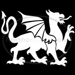 Dragon vinyl kids wall art car truck decal sticker 103