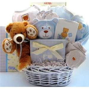 Welcome Baby Boy Teddy Bear Basket Baby