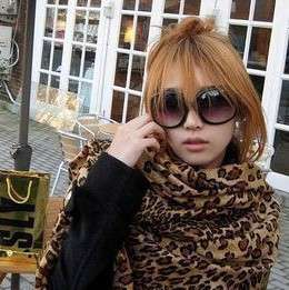 Womens Fashion Leopard Print Shawl Scarf Wrap NEW HOT