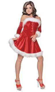 MRS. CLAUS SANTA womens halloween christmas costume M