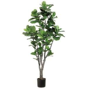 6? Fiddle Leaf Fig Tree w/Pu Trunk in Plastic Pot Green