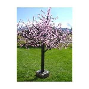 LED Cherry Blossom LED Tree Pink 8 CHERYYR8 61