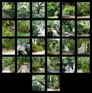 Garden Series Digital Backdrops Vol. 1,2 & 3 with bonus