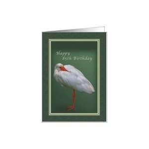 Birthday 85th, White Ibis Bird Card Toys & Games