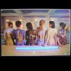Pink Floyd Neon LED Lighted Poster   by Neonetics