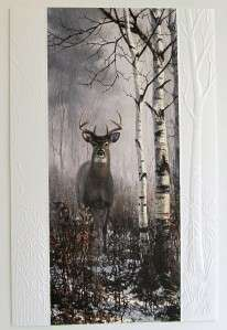 Greeting Card Masculine Deer Hunting White Tailed Deer Birch Buck USA