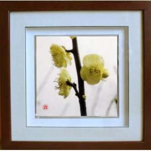 Framed Chinese Silk Embroidery Plum Blossom Flower 13.8