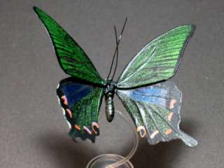 Yujin Japan Insect Figure 3 Chinese Peacock Butterfly