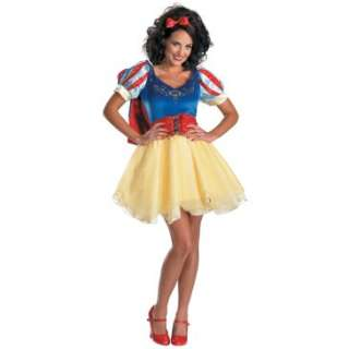 Disney Snow White Prestige Adult Costume, 60405