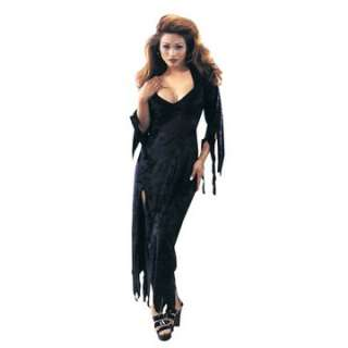 Adult Endora Costume   Complete your sexy gothic Halloween costume