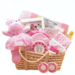 New Baby Girl Gift Basket   Great Shower Gift Idea for Newborns Baby