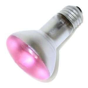 Philips 266353   50R20/PK Colored Flood Light Bulb