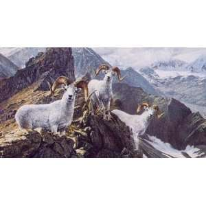 Ron Van Gilder   High Trails Dall Sheep: Home & Kitchen