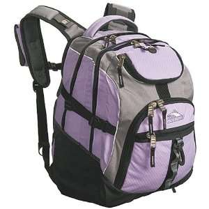 High Sierra ACCESS Laptop Backpack Electronics